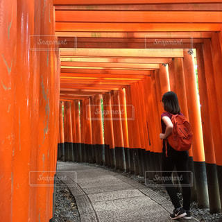 京都,神社,伏見稲荷神社,お寺,千本鳥居,日本文化