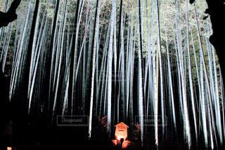 夜の拝観の写真・画像素材[926250]