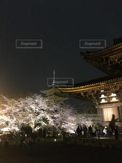 京都,観光,ライトアップ,東寺