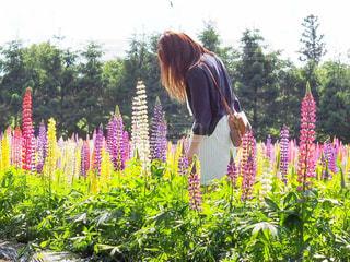 花の前にの写真・画像素材[910897]