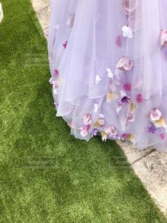 ドレスの写真・画像素材[2989238]