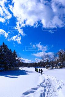 雪に覆われた斜面をスキーに乗る男の写真・画像素材[907222]