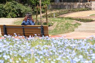 公園のベンチに座っている人の写真・画像素材[1393977]