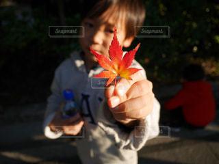 花を持っている人の写真・画像素材[1022573]