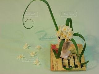 花 水仙 スイセン 白色 フラワー 葉 葉っぱ