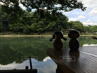 桂川の写真・画像素材[908108]