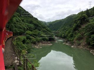 嵐山 トロッコ列車の写真・画像素材[911151]