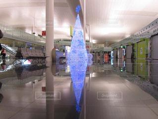スペイン バルセロナ空港 クリスマスツリーの写真・画像素材[923034]