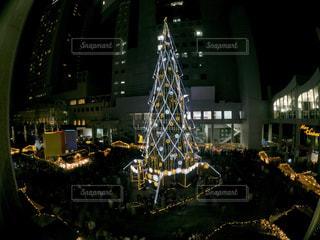 ドイツ・クリスマスマーケット大阪2017 クリスマスツリー🎄の写真・画像素材[930227]