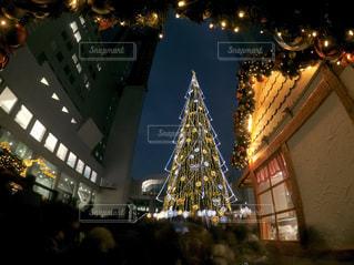 ドイツ・クリスマスマーケット大阪2017 クリスマスツリー🎄の写真・画像素材[930228]