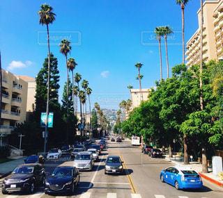 海,海外,南国,アメリカ,ロサンゼルス,サンタモニカ,カリフォルニア