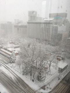 雪一面の写真・画像素材[911047]