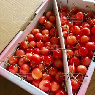 フルーツ,果物,さくらんぼ,佐藤錦