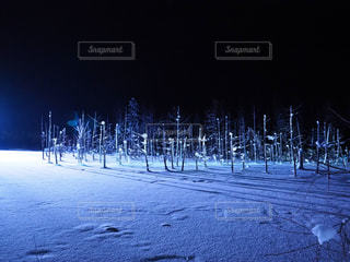 雪に覆われた通り - No.912365