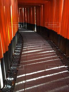 京都,神社,赤,鳥居,和,伏見稲荷