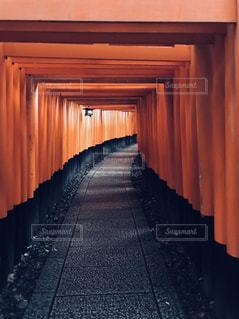 京都,神社,静か,鳥居,伏見稲荷大社