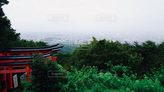 京都,神社,鳥居,伏見稲荷大社,町並み