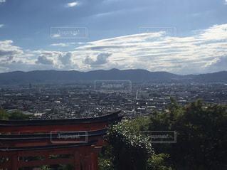 屋外,京都,観光,丘,眺め