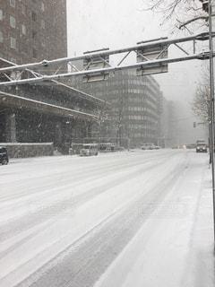 自然,雪景色,街中,雪化粧,市街