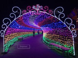 冬,イルミネーション,イベント,クリスマス,聖なる夜