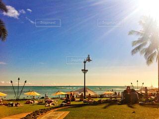 常夏の島の写真・画像素材[1011382]