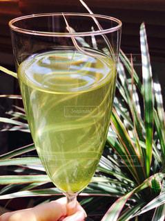 緑,リラックス,スタイリッシュ,日本,お茶,和,グリーン,緑茶,グリーンティー,シャンパングラス,香り,おしゃれ,煎茶,洋