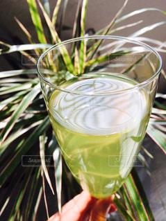 緑,葉,リラックス,スタイリッシュ,グラス,ティータイム,日本,お茶,和,グリーン,緑茶,日本茶,グリーンティー,シャンパングラス,香り,おしゃれ,煎茶,洋