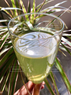 緑茶の写真・画像素材[1059245]