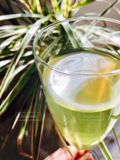 緑,葉,リラックス,スタイリッシュ,グラス,ティータイム,日本,和,グリーン,緑茶,日本茶,グリーンティー,シャンパングラス,香り,おしゃれ,煎茶,洋
