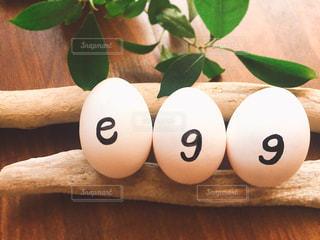 eggの写真・画像素材[1197413]