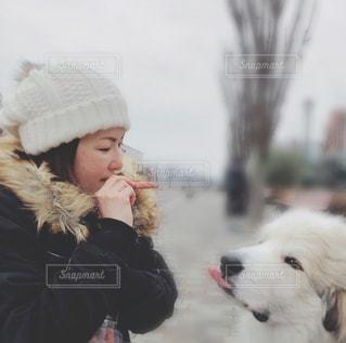 親友と愛犬の写真・画像素材[2728109]