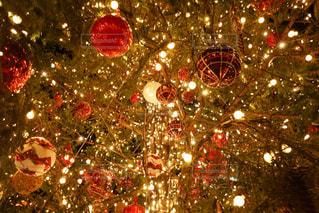クリスマス ツリー - No.915062