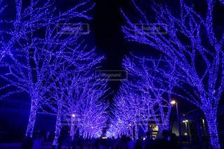夜空に花火のグループ - No.915064