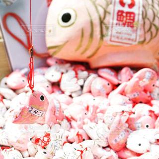 ピンク,川越氷川神社,おみくじ,桃色,pink