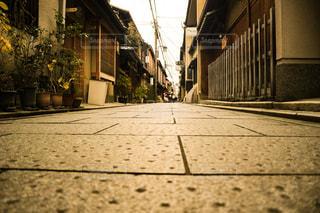 風景,屋外,京都,地面,祇園,猫目線