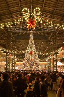 イルミネーション,キラキラ,クリスマス,ツリー,ディズニーランド,ディズニー,クリスマスツリー,Disney,Disneyland,Christmas,Xmas,クリスマスディズニー