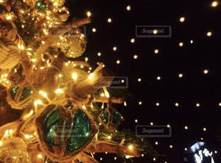 クリスマスツリーの写真・画像素材[1087859]