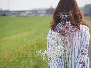 かすみ草の写真・画像素材[3088134]