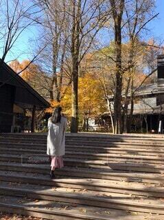軽井沢散歩の写真・画像素材[3898084]