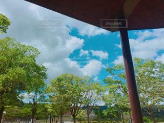 空の写真・画像素材[210351]