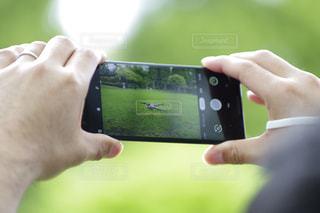 携帯電話を持つ手の写真・画像素材[2285840]