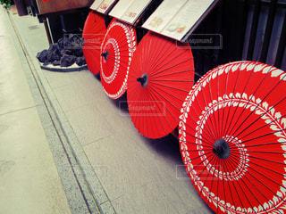 京都,赤,日本,店,和,町並み,観光名所,先斗町,番傘