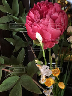 花,緑,花束,牡丹,ミックス,フリージア
