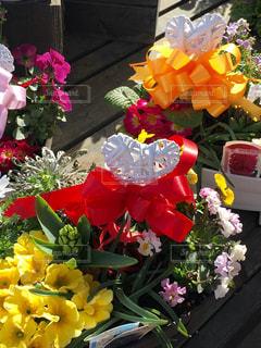 花,フラワー,女子,日差し,リボン,モダン,装飾,グリーン,新鮮,寄せ植え,ウッドデッキ,ライフスタイル,複数,フォトジェニック,インスタ映え,配置