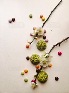 白梅の小枝との写真・画像素材[1037602]