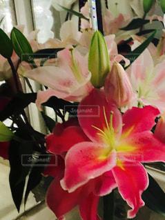 テーブルの上に花瓶の花の写真・画像素材[1458947]