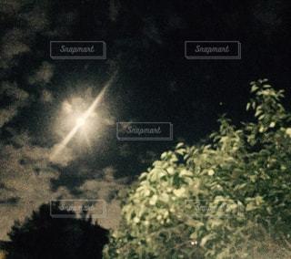 夜空にの写真・画像素材[1475015]