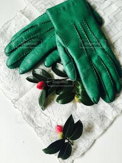 花と手袋の写真・画像素材[1651118]