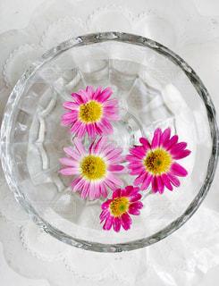 花のクローズアップの写真・画像素材[2121782]