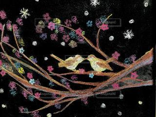 花,屋内,ペア,カラフル,アート,鮮やか,樹木,可愛い,黒板,ハッピー,お気に入り,小鳥,ライフスタイル,草木,日中,おしゃれ,ホール,ボード,多彩,フォトジェニック,ファンシー,チョークアート,多色,私の生活,パード